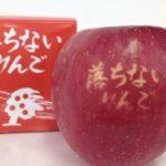 落ちないリンゴの話は青森と秋田?通販の値段やお守りの販売【アンビリバボー】